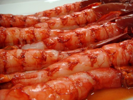 Scarlet Prawns Laocook Body